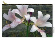 Surprise Lilies Carry-all Pouch