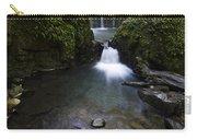 Susan Creek Falls Oregon 5 Carry-all Pouch