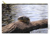 Swamp Turtle Carry-all Pouch