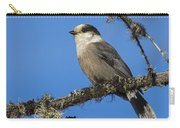 Swampy Perch Carry-all Pouch
