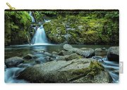 Sweet Creek Falls Carry-all Pouch