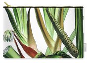 Sweet Flag Or Calamus, Acorus Calamus Carry-all Pouch