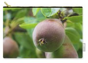 Sweet Fruit Carry-all Pouch