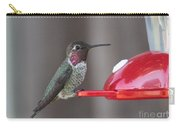 Sweet Hummingbird Face Carry-all Pouch