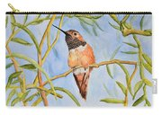 Sweet Hummingbird Carry-all Pouch