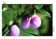 Sweet Ripe Blue Plum On A Branch Carry-all Pouch