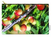 Sweet Ripe  Plum On A Branch Carry-all Pouch