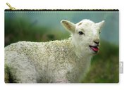 Swet Little Lamb Carry-all Pouch