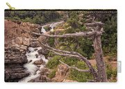 Swiftcurrent Lake Falls Carry-all Pouch