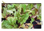 Swiss Chard In A Vegetable Garden 1 Carry-all Pouch