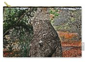 Sycamore Tree And Fall Leaves Carry-all Pouch