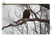 Symbol Of Freedom Carry-all Pouch
