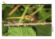 Sympetrum Sanguineum Carry-all Pouch