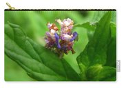 Synchlora Aerata Caterpillar Carry-all Pouch