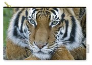 Takin A Break Tiger Carry-all Pouch
