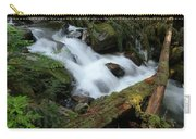 Talapus Creek Carry-all Pouch