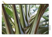 Talipot Palm Carry-all Pouch