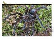 Tarantula Pamphobeteus Sp Male, Mindo Carry-all Pouch