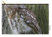 Tawny Owl Carry-all Pouch