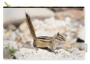 Teasing Chipmunk #3 Carry-all Pouch