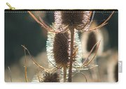 Teasle In Morning Light Carry-all Pouch
