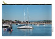 Teignmouth Harbour Carry-all Pouch
