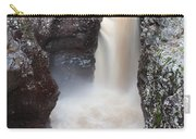 Temperance River State Park Four Carry-all Pouch