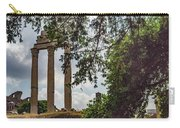 Temple Of Castor And Pollux Carry-all Pouch