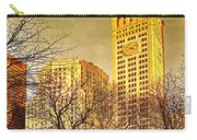 Ten Past Four At Madison Square Park Carry-all Pouch