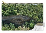 Tennessee River Gorge And Waterfall Panorama Carry-all Pouch