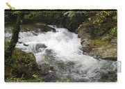 Tennessee River Carry-all Pouch