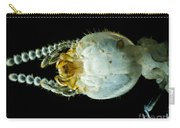 Termite Head, Lm Carry-all Pouch