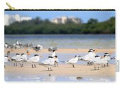 Terns At Fort Myers Carry-all Pouch