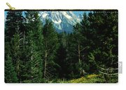 Teton Meadow Carry-all Pouch
