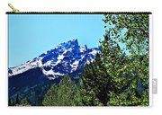 Teton Picture Perfect Carry-all Pouch