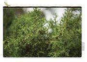 Texas Cedar Tree Carry-all Pouch