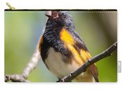 The American Redstart Carry-all Pouch