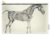 The Anatomy Of The Horse Carry-all Pouch by George Stubbs
