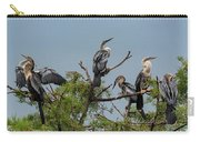 The Anhinga Perch Carry-all Pouch
