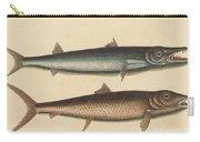 The Barracuda (esox Barracuda) Carry-all Pouch