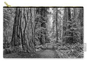 The Beautiful And Massive Giant Redwoods Carry-all Pouch