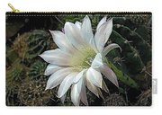 The Beauty Of Cactus Carry-all Pouch
