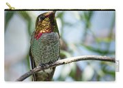 The Bird In The Foil Mask -- Anna's Hummingbird In Templeton, California Carry-all Pouch