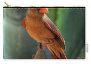 The Cardinal  Carry-all Pouch