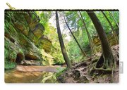 The Caves And Trail At Old Man's Cave Hocking Hills Ohio Carry-all Pouch