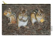 The Chipmunks Carry-all Pouch