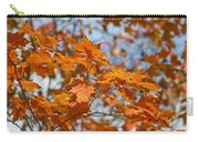 The Color Of Fall 1 Carry-all Pouch