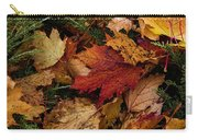 The Color Of Fall Carry-all Pouch