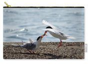 The Courtship Feeding - Series 2 Of 3 Carry-all Pouch