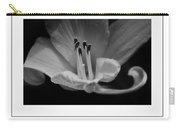 The Day Lily Poster Carry-all Pouch